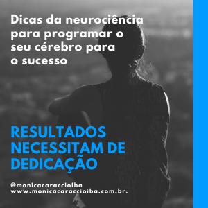 Dicas da neurociência para programar o seu cérebro para o sucesso (14)